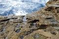 Aménagez en parc avec l eau et des roches en île de thassos grèce Photos libres de droits