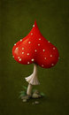 Amanita in  shape of  heart. Royalty Free Stock Images
