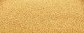 Amaranth grain seeds close up background Royalty Free Stock Photo