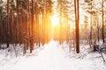 Amazing Beautiful sunset sunrise sun sunshine in sunny winter snowy Royalty Free Stock Photo