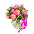 Amazing bouquet of pink pions isolated on white Royalty Free Stock Image