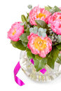 Amazing bouquet of pink pions on white background Stock Photography