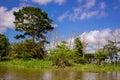 Amazing clouds at a rainforest amazon jungle amazon river Stock Photos