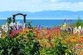 Flor jardín