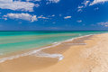 Amazing golden sand beach near Monopolli Capitolo, Apulia region, Southern Italy Royalty Free Stock Photo