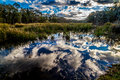 Amazing Reflections on the Marshy Still Waters of Creekfield Lake. Royalty Free Stock Photo