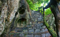 Amazing stone staircase fence tree scene at mekong delta rocky mountain old with rock with large trunk abstrack roof and big Royalty Free Stock Images