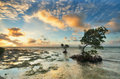 Amazing sunrise in florida island one of the reef keys islands at keys usa Stock Photography