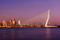 Amazing sunset view of Erasmus bridge and several skyscrapers in Rotterdam, Holland. Royalty Free Stock Photo