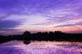 Amazing sunset on violet color Royalty Free Stock Photography