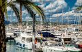 Amazing view of the city of Cannes, France, palm trees, yachts Royalty Free Stock Photo
