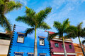 Amazing view on colourful houses and palm trees on street. Locat Royalty Free Stock Photo