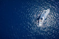 Amazing view to yacht sailing in open sea at windy day drone view birds eye angle Stock Images