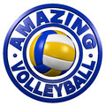 Amazing Volleyball circular design Stock Images