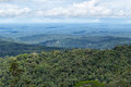 The Amazon basin of Ecuador Royalty Free Stock Photo