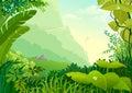 Selva y espesor
