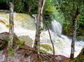 Amazon waterfall beautiful in jungle called sanctuary close to the city of presidente figueiredo in amazonas brazil Royalty Free Stock Image