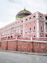 Amazonas theater in manaus brazil Royalty Free Stock Images