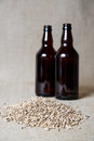 Amber malt and beer bottles Stock Image