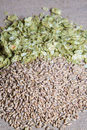 Amber malt plus summer hops on muslin and Stock Images