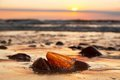 Amber stone on the beach. Precious gem, treasure. Baltic Sea Royalty Free Stock Photo