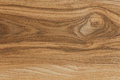 American Ash wooden board with beautiful pattern Royalty Free Stock Image