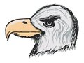 American bald eagle hand drawn sketch cartoon illustration of Royalty Free Stock Photos