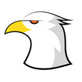 American bald eagle head design vector illustration Stock Images