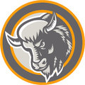 American buffalo bison head circle retro illustration of an angry bull facing to side set inside done in woodcut style on isolated Royalty Free Stock Photos