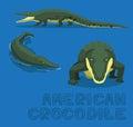 American Crocodile Cartoon Vector Illustration
