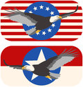 American eagle flags a pair of bald flag designs Stock Photo