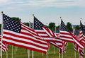 American Field of Flags on Memorial Day Royalty Free Stock Photo