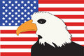 American Flag with Bald Eagle Royalty Free Stock Photography