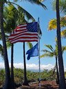 American Flag Blowing in the Wind by Tall Palm Trees Royalty Free Stock Photo