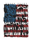 American flag Brooklyn New York Miami California graffiti seamless pattern, t-shirt graphics.