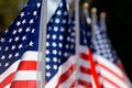 American Flag Display in honor of Veterans Day Royalty Free Stock Photo