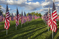 American flag displayed rows field honor Stock Photo