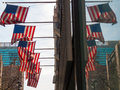 American flag many flags hissed on one building Stock Photography