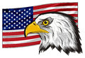 American flag with national bird