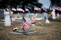 American flags honoring war dead cemetery adorned with Royalty Free Stock Photography