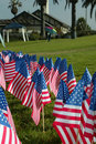 American Flags in a Park Royalty Free Stock Image