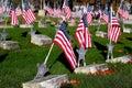 American Flags In Veterans Mem...