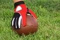 American Football Snap Stock Photos