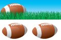 American football vector banner of ball on green grass ball isolated on white background Royalty Free Stock Photo