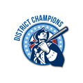 American Patriot Baseball District Champions Royalty Free Stock Photo