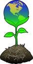 Americas jordklotgreen Arkivfoto