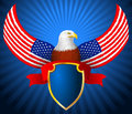 Amerikan eagle flag wing shield ribbon Arkivbild