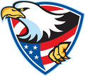 Amerikan skalliga eagle flag shield Arkivbild