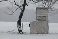 Amish boy peeking from outhouse fence young out behind a of an in rural delaware during a snow storm Stock Image