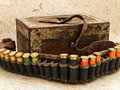Ammunition belt Royalty Free Stock Photography